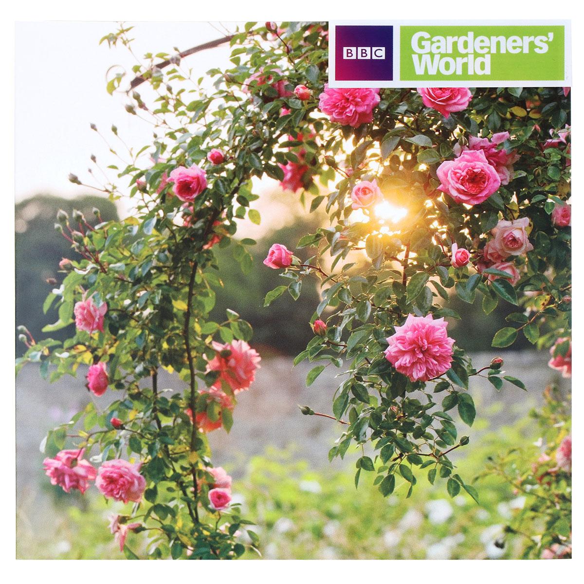 Gardeners' World Climbing Rose Rambler Greeting Card