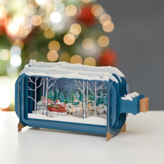 Sleigh Message in a Bottle Christmas Card
