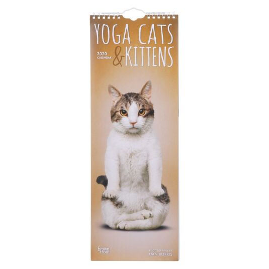 Yoga Cats & Kittens 2020 Slim Calendar