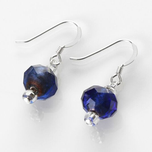Blue Winter Radiance Earrings