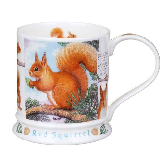 Wildlife Red Squirrel Iona Shape Mug