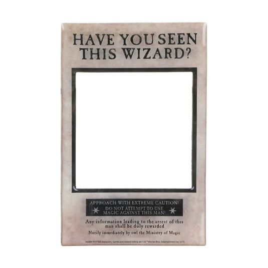 'Have You Seen This Wizard' Magnetic Frame
