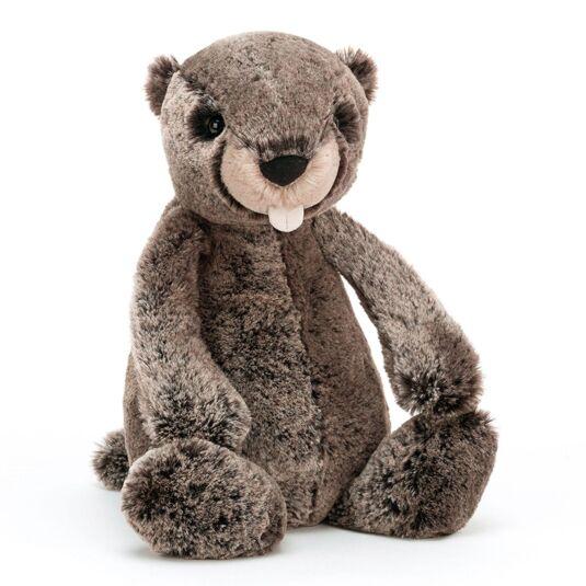 Bashful Medium Marmot