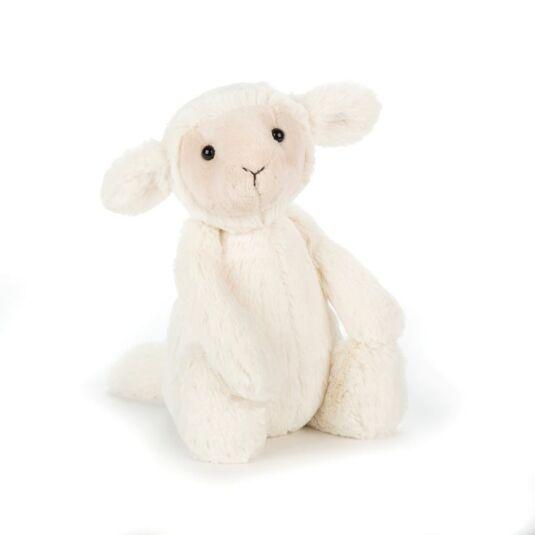 Medium Bashful Lamb