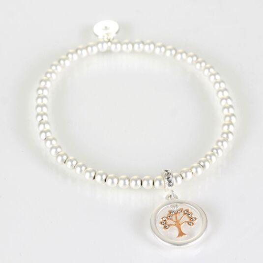 Matt Silver & Rose Gold Plated Circle of Life Boxed Bracelet