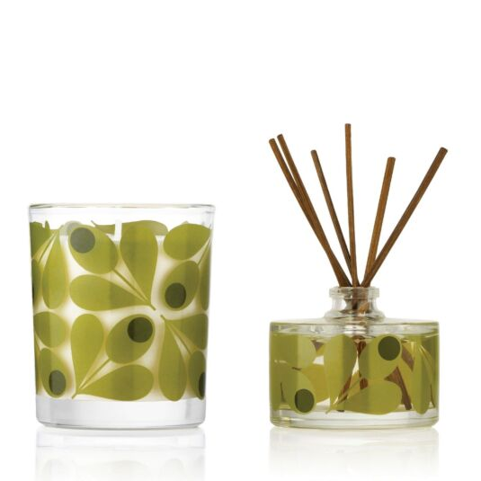 Acorn Cup Fig Tree Candle and Diffuser Set