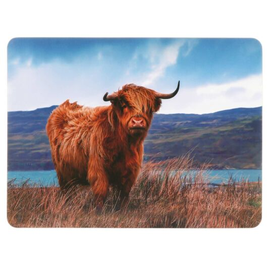 Highland Cow Set of 4 Placemats
