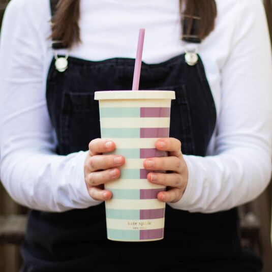 Aubergine and Pale Blue Half Stripe Tumbler with Straw