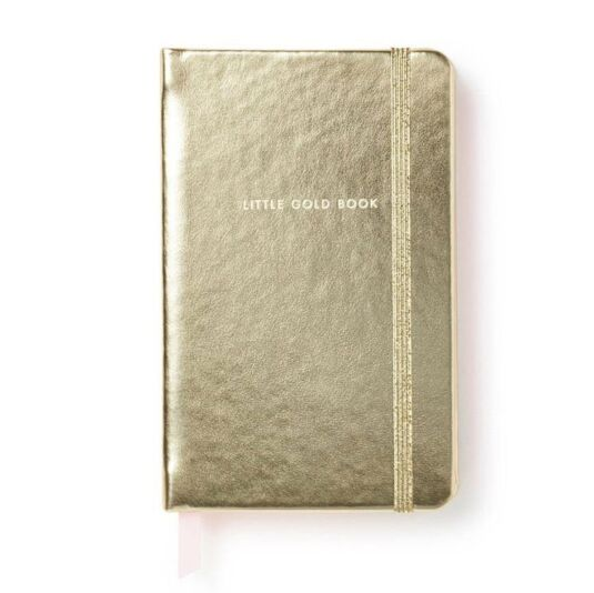Take Note Little Gold Book Medium Notebook