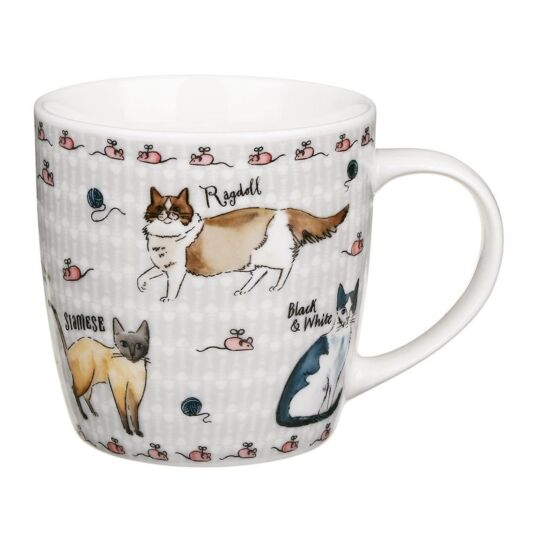 Curious Cats New Bone China Mug