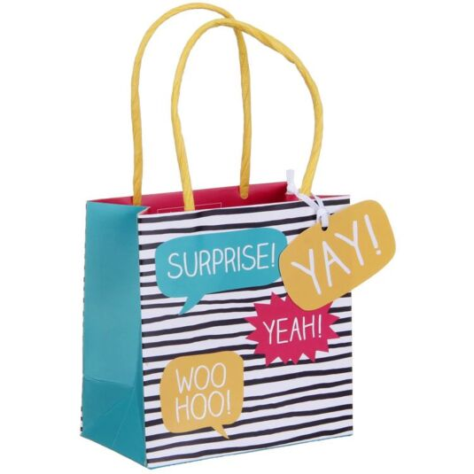 Surprise Small Gift Bag