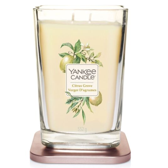 Citrus Grove Large Elevation Candle