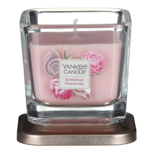 Salt Mist Peony Elevation Small Jar Candle