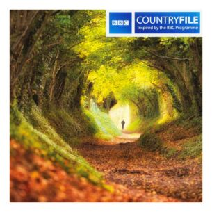 Country File - Tree Tunnel to Halnaker Windmill Greeting Card