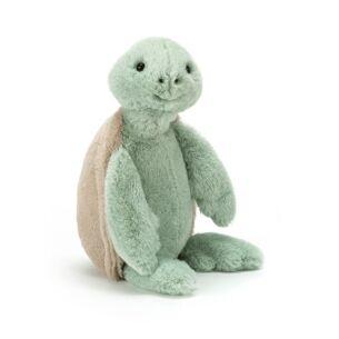 Small Bashful Turtle
