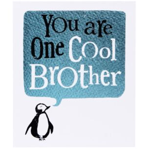 The Bright Side One Cool Brother Card