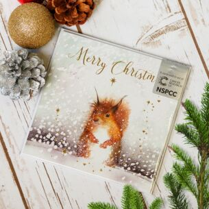 Snowy Squirrel Pack of Six Charity Christmas Cards