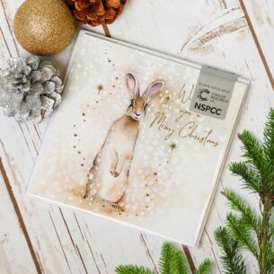 Hare In The Snow Pack of Six Charity Christmas Cards