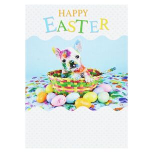 Pack Of 5 'Pug & Eggs' Easter Cards