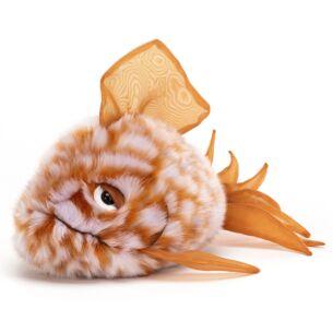 Orange Grumpy Fish