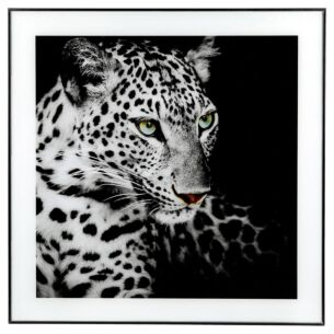 Large Monochrome Leopard Print with Black Frame