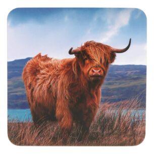Highland Cow Set of 4 Coasters