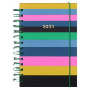 Enchanted Stripe 12 Month 2021 Spiral Medium Planner