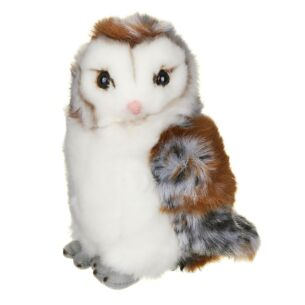Medium Barn Owl