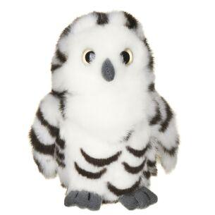 Small Snowy Owl