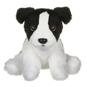 SMOLS Dog Border Collie