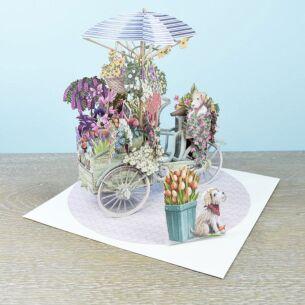 """Me & McQ """"Flower Seller's Bike"""" Blue 3D Birthday Card"""