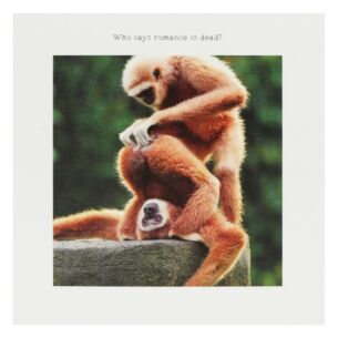 Monkey Valentine's Day Card