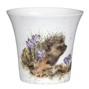 Hedgehog Flower and Herb Pot