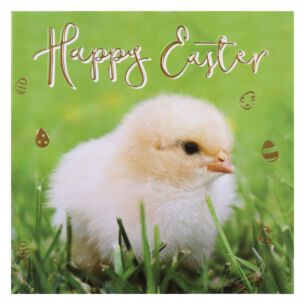 'Chick' Easter Card