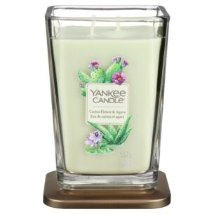 Cactus Flower & Agave Large Elevation Candle