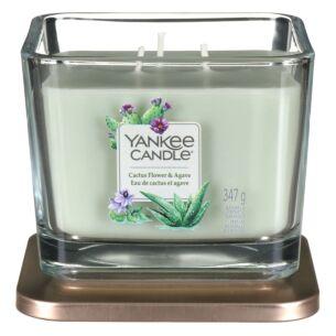 Cactus Flower & Agave Medium Elevation Candle