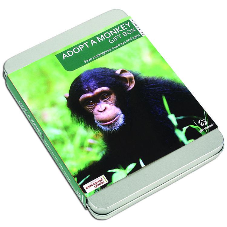 Adopt a Monkey Experience Tin