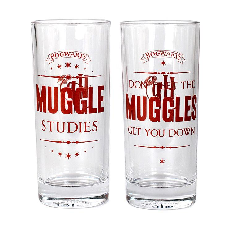Harry Potter Muggles Glass Tumblers Set of 2